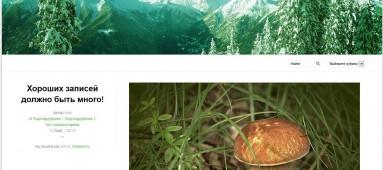 Pinzolo - тема для wordpress на русском