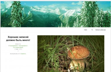Pinzolo - тема для wordpress на русском