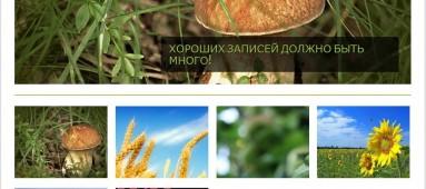 Magazino - бесплатная тема для wordpress