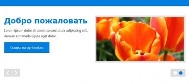 zeeVision - русская тема wordpress
