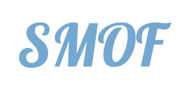 Разбираемся в Slightly Modded Options Framework