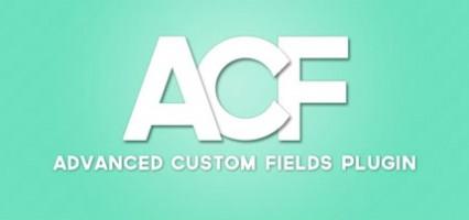 Advanced Custom Fields - произвольные поля и настройки записи в Wordpress